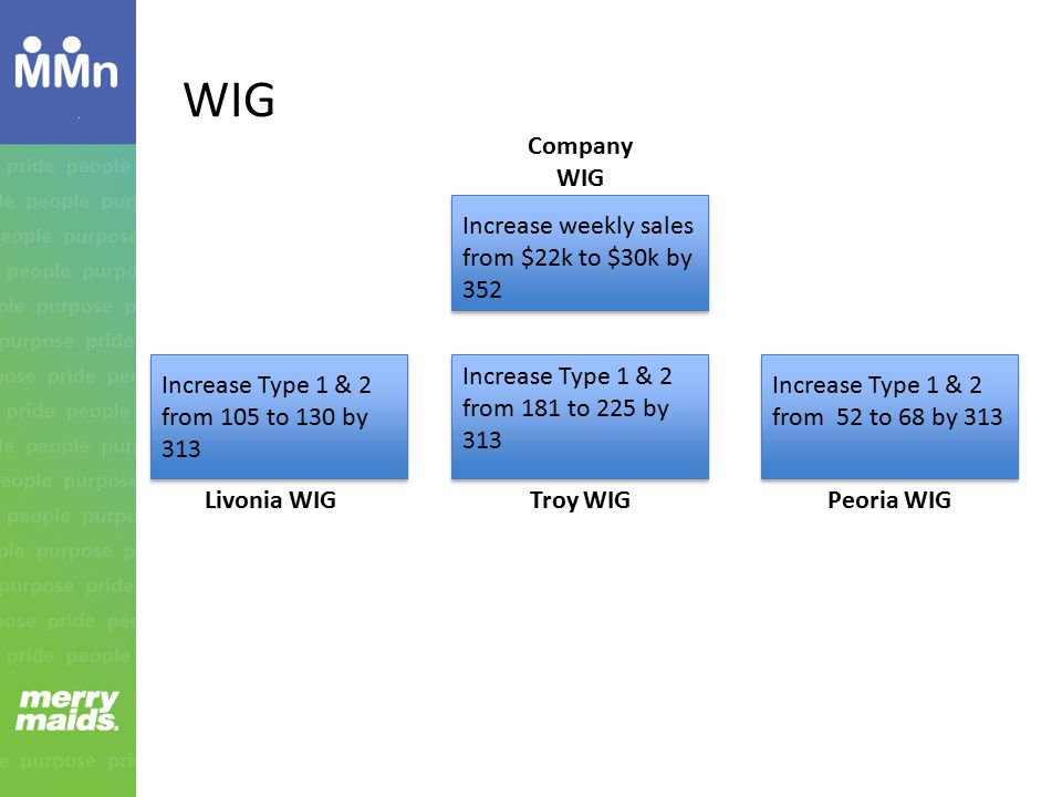 WIG Increase weekly sales from $22k to $30k by 352 Increase Type 1 & 2 from 105 to 130 by 313 Increase Type 1 & 2 from 181 to 225 by 313 Increase Type 1 & 2 from 52 to 68 by 313 Livonia WIGTroy WIGPeoria WIG Company WIG