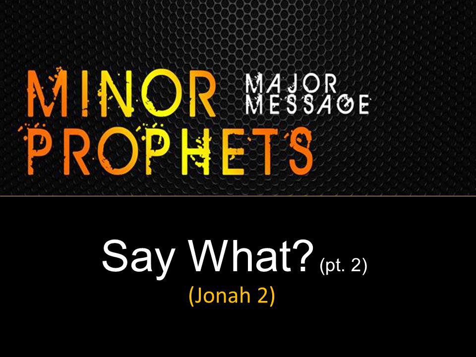 Say What? (pt. 2) (Jonah 2)