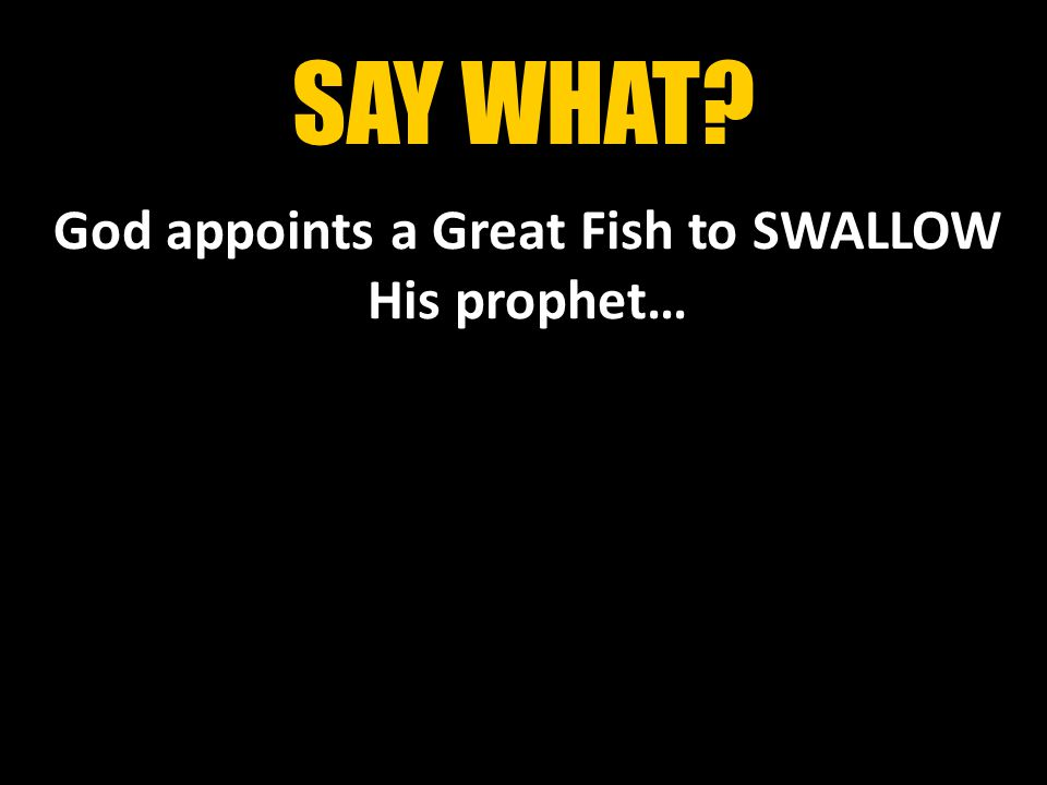 SAY WHAT God appoints a Great Fish to SWALLOW His prophet…