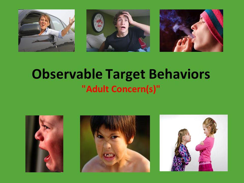 Observable Target Behaviors Adult Concern(s)