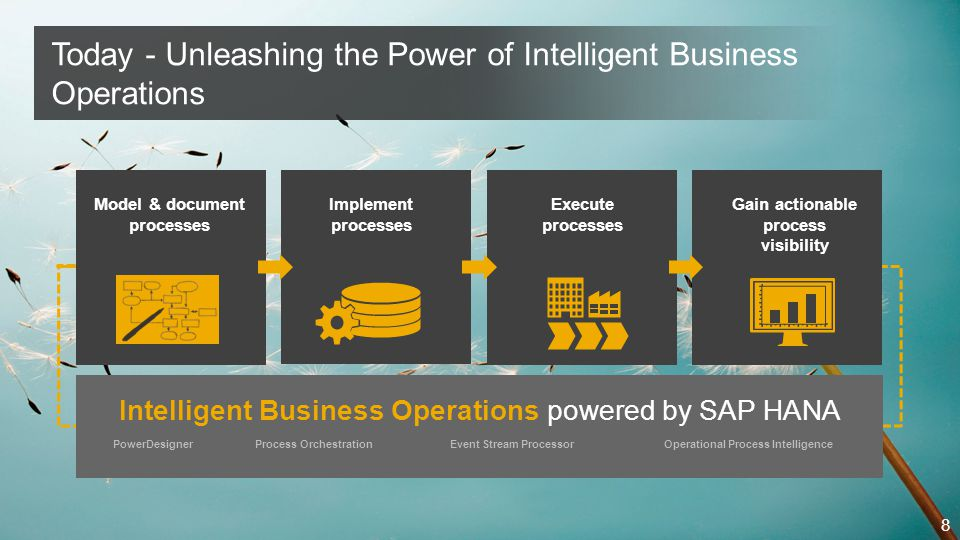 Intelligent Business Operations powered by SAP HANA Architectural View - Overview and Outlook