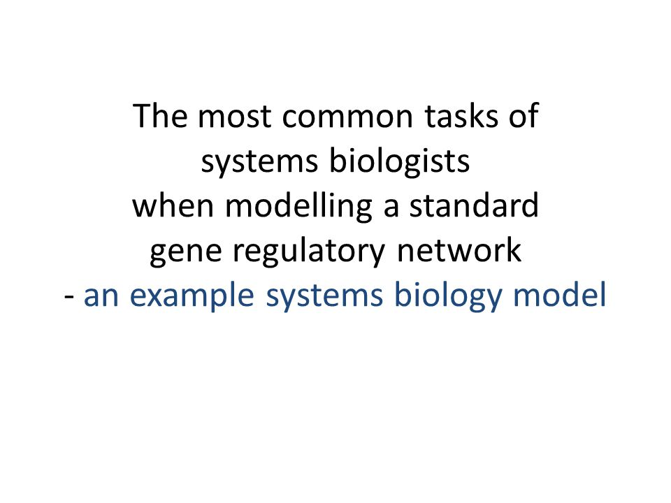 The most common tasks of systems biologists when modelling a standard gene regulatory network - an example systems biology model