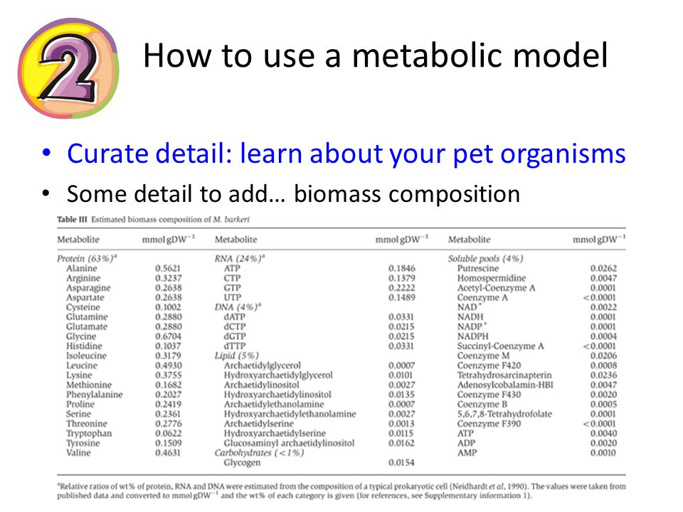 How to use a metabolic model Curate detail: learn about your pet organisms Some detail to add… biomass composition