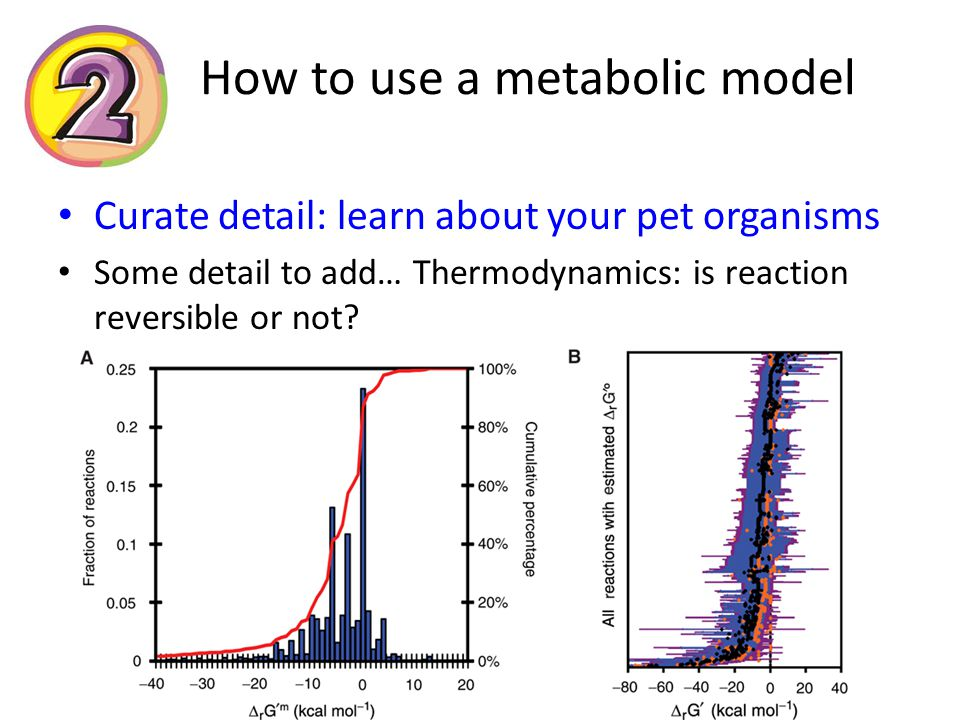 How to use a metabolic model Curate detail: learn about your pet organisms Some detail to add… Thermodynamics: is reaction reversible or not