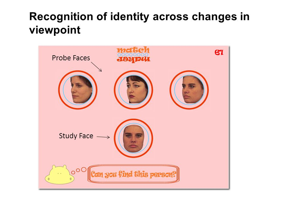 Recognition of identity across changes in viewpoint Study Face Probe Faces