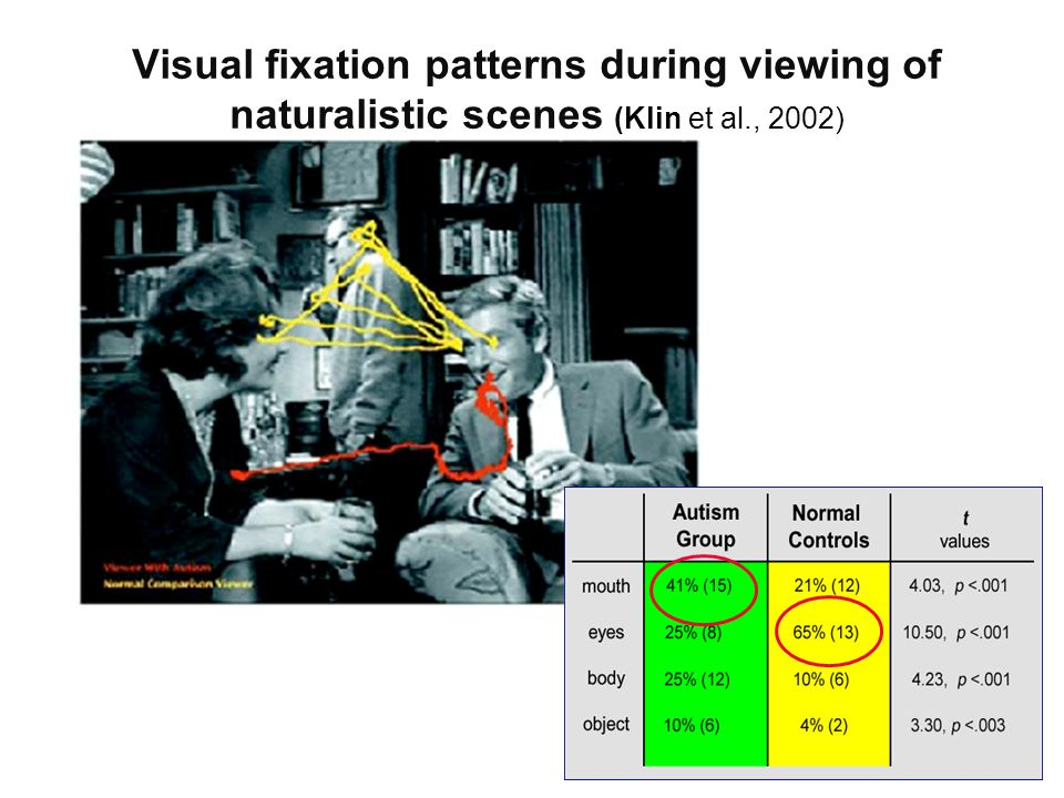 Visual fixation patterns during viewing of naturalistic scenes (Klin et al., 2002)