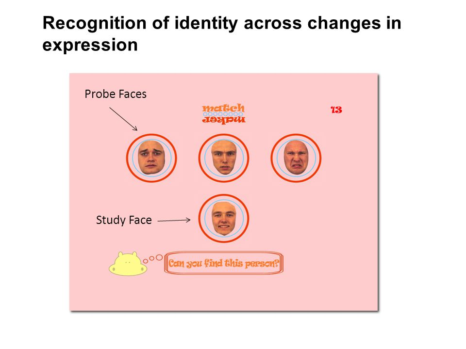 Recognition of identity across changes in expression Study Face Probe Faces