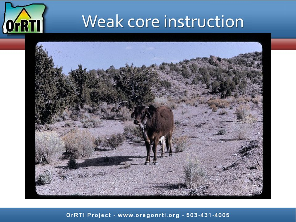 Strong core instruction