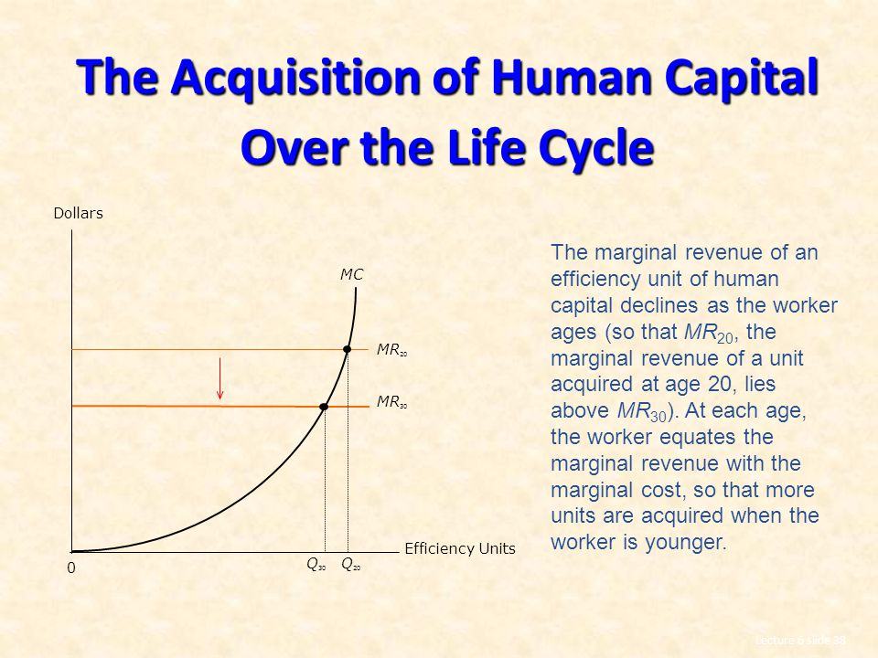 Lecture 6 slide 38 The Acquisition of Human Capital Over the Life Cycle MC MR 20 MR 30 Dollars 0 Q 30 Q 20 Efficiency Units The marginal revenue of an efficiency unit of human capital declines as the worker ages (so that MR 20, the marginal revenue of a unit acquired at age 20, lies above MR 30 ).