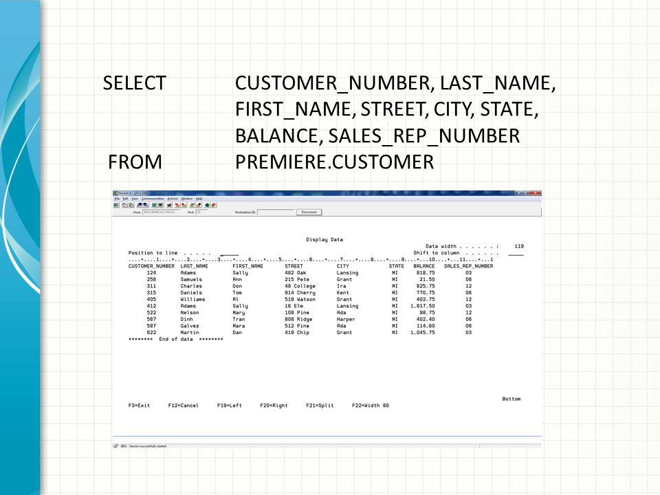 What command is being used? DSPFD PRMIERC40/CUSTOMER *CST