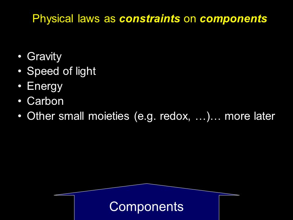 Components Physical laws as constraints on components Gravity Speed of light Energy Carbon Other small moieties (e.g.