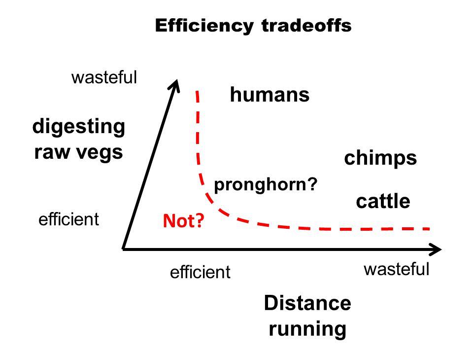 Efficiency tradeoffs efficient wasteful efficient wasteful Not.