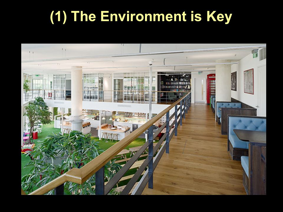 (1) The Environment is Key