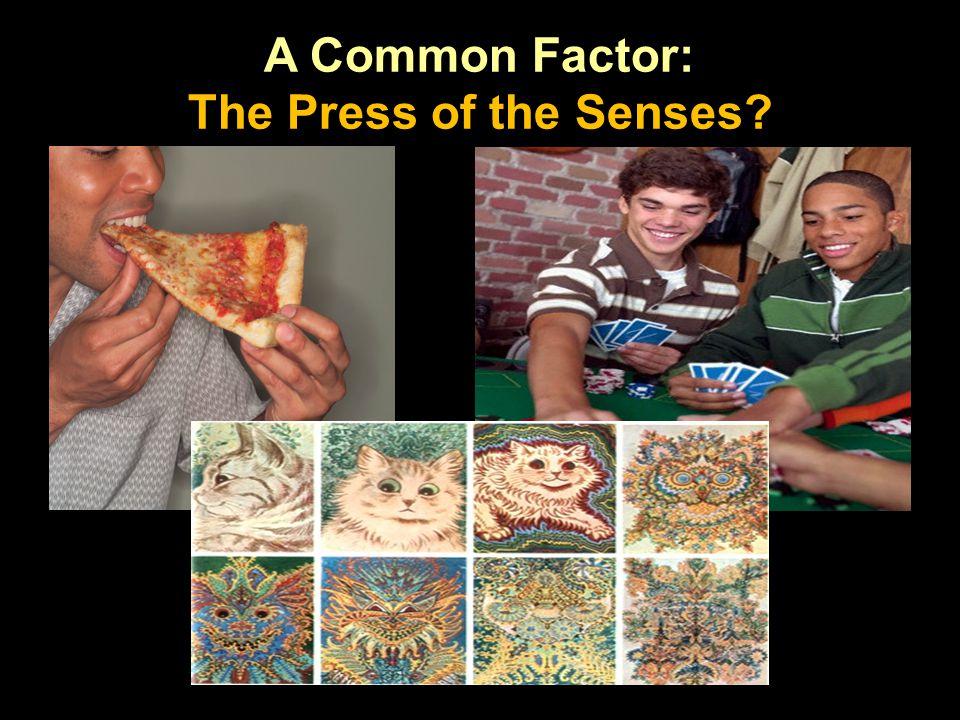 A Common Factor: The Press of the Senses