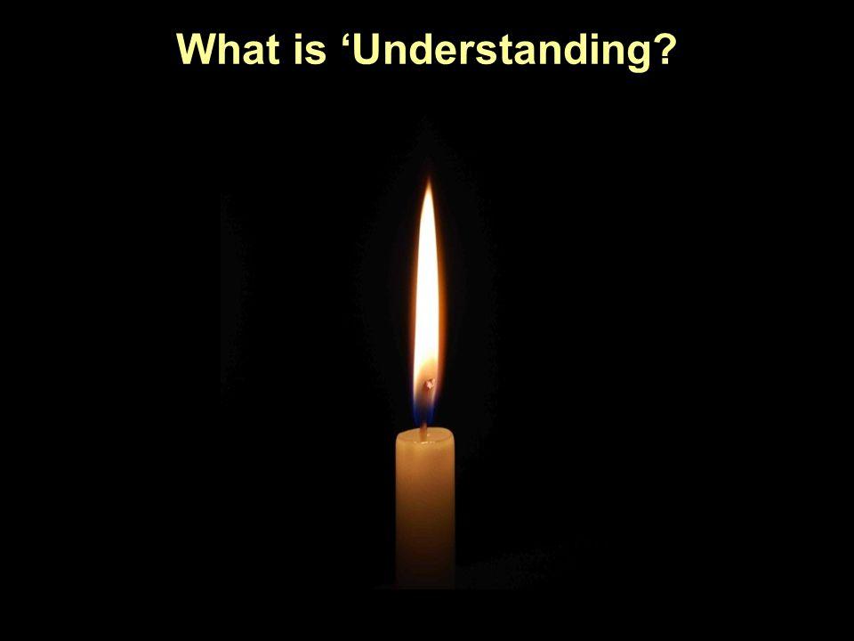 What is 'Understanding
