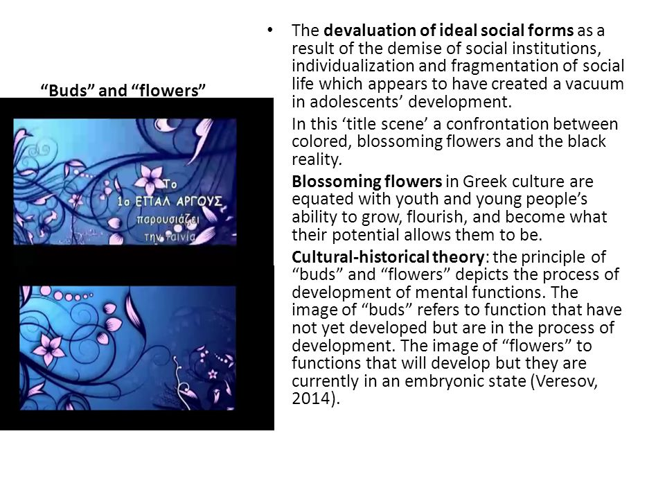 Buds and flowers The devaluation of ideal social forms as a result of the demise of social institutions, individualization and fragmentation of social life which appears to have created a vacuum in adolescents' development.