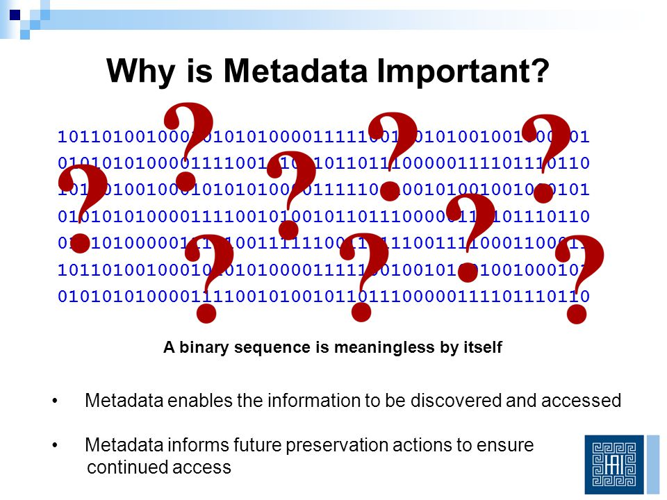 What metadata is necessary to preserve digital objects so that they remain accessible and authentic over time.