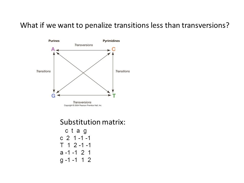 Substitution matrix: c t a g c 2 1 -1 -1 T 1 2 -1 -1 a -1 -1 2 1 g -1 -1 1 2 What if we want to penalize transitions less than transversions