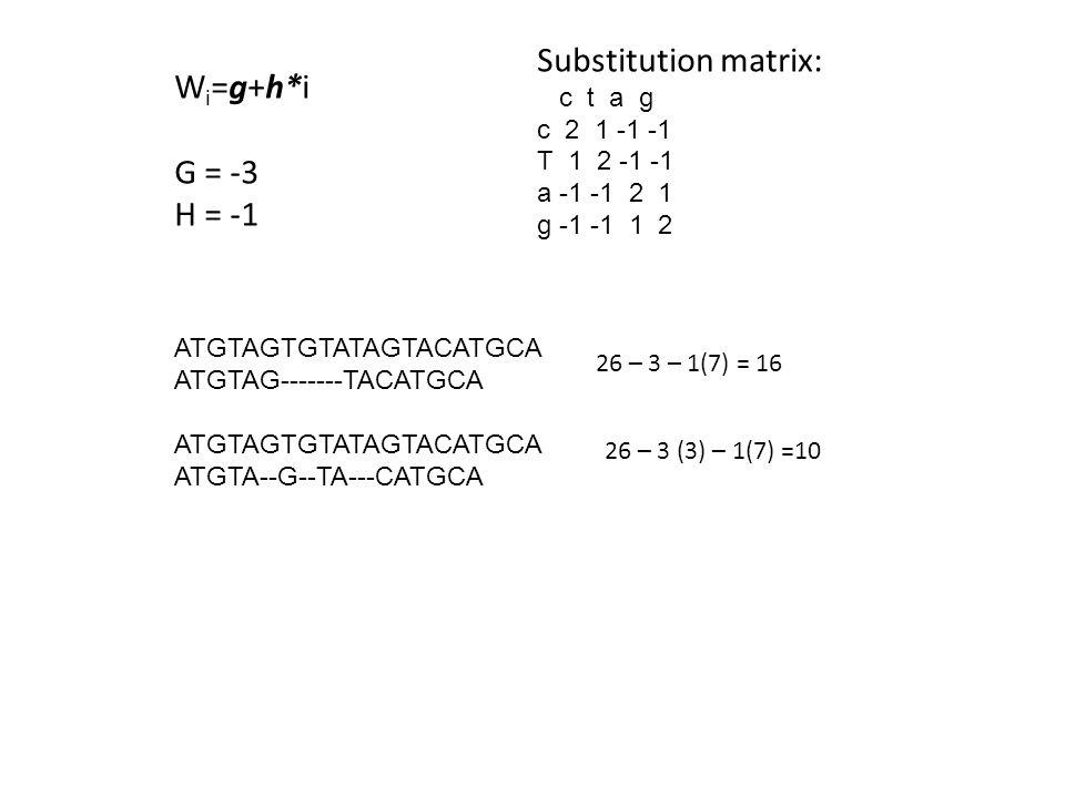 ATGTAGTGTATAGTACATGCA ATGTAG-------TACATGCA ATGTAGTGTATAGTACATGCA ATGTA--G--TA---CATGCA W i =g+h*i G = -3 H = -1 Substitution matrix: c t a g c 2 1 -1