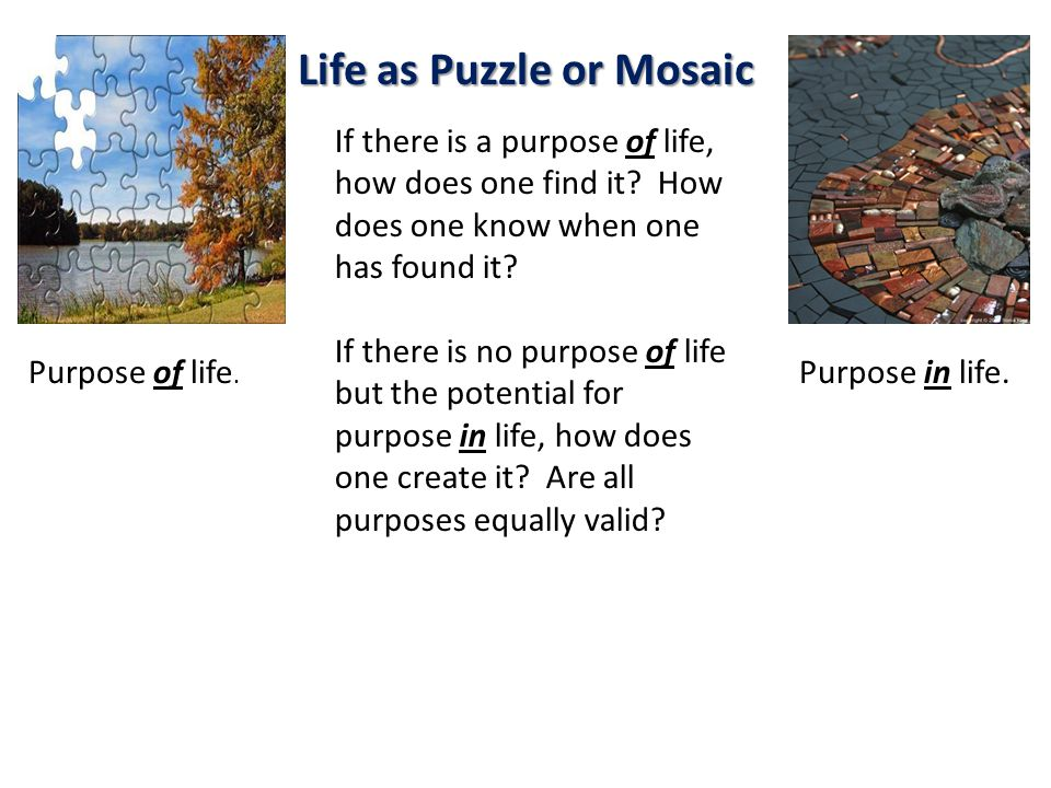 Life as Puzzle or Mosaic Purpose of life. Purpose in life. If there is a purpose of life, how does one find it? How does one know when one has found i