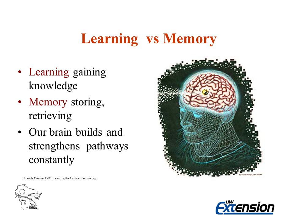 Learning vs Memory Learning gaining knowledge Memory storing, retrieving Our brain builds and strengthens pathways constantly Marcia Conner 1995, Learning the Critical Technology