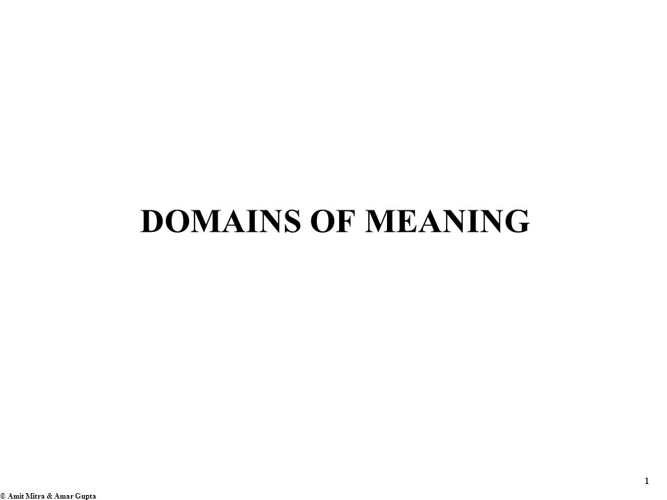 1 © Amit Mitra & Amar Gupta DOMAINS OF MEANING
