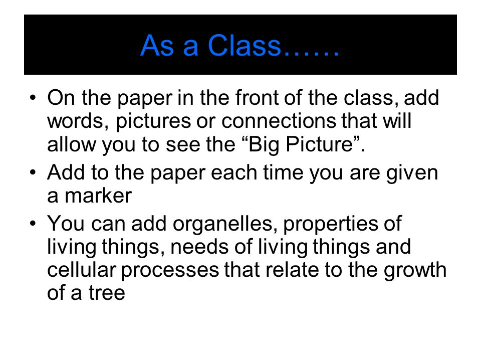 As a Class…… On the paper in the front of the class, add words, pictures or connections that will allow you to see the Big Picture .
