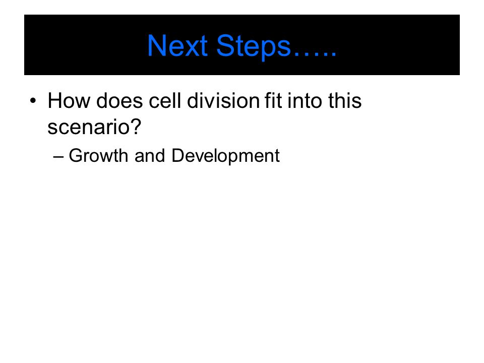 Next Steps….. How does cell division fit into this scenario? –Growth and Development