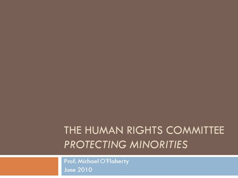 The Committee  The ICCPR treaty body  18 independent experts elected by States Parties  Review of periodic reports  Consider individual communications  Generate General Comments