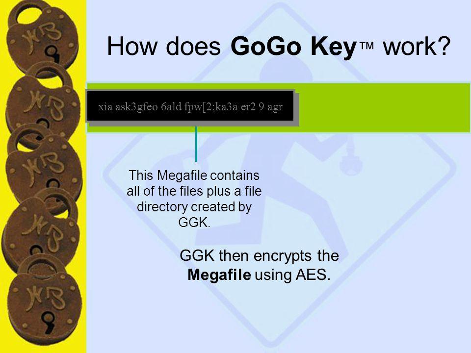 18 How does GoGo Key ™ work.