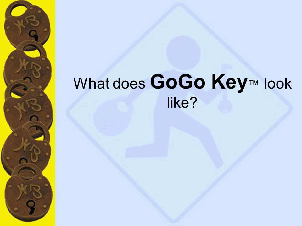 8 What does GoGo Key ™ look like?