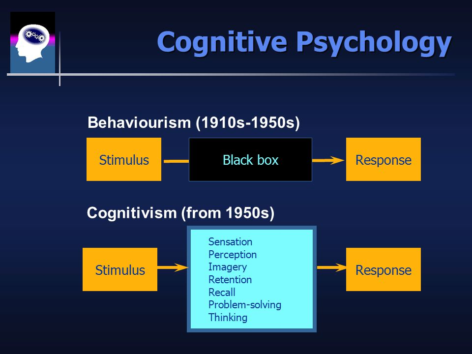 Cognitive Psychology StimulusResponse StimulusResponse Sensation Perception Imagery Retention Recall Problem-solving Thinking Behaviourism (1910s-1950s) Cognitivism (from 1950s) Black box