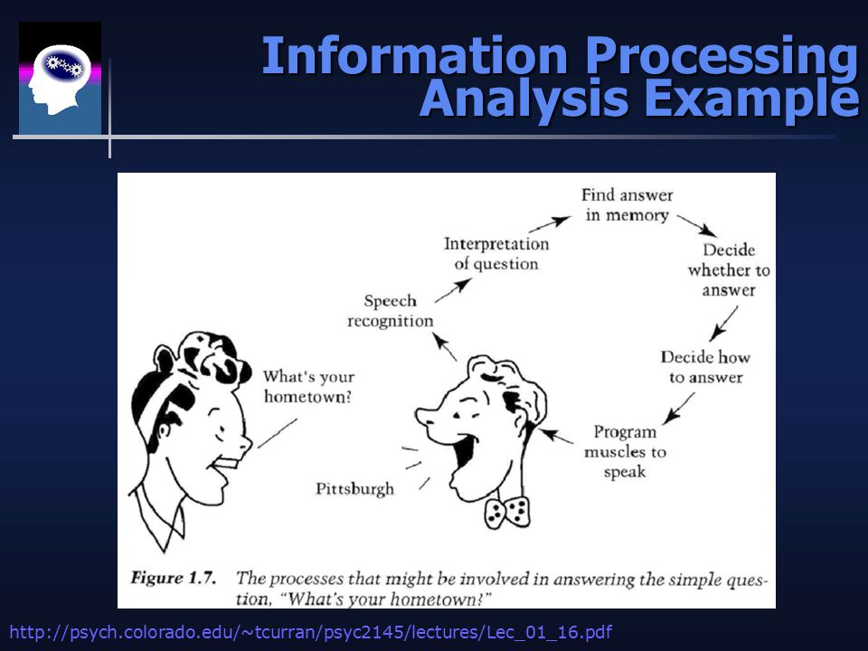 Information Processing Analysis Example Information Processing Analysis Example http://psych.colorado.edu/~tcurran/psyc2145/lectures/Lec_01_16.pdf