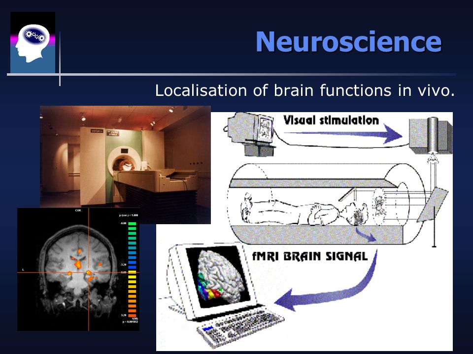 Neuroscience Localisation of brain functions in vivo.