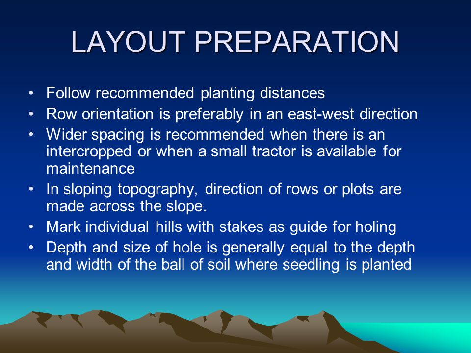 LAYOUT PREPARATION Follow recommended planting distances Row orientation is preferably in an east-west direction Wider spacing is recommended when there is an intercropped or when a small tractor is available for maintenance In sloping topography, direction of rows or plots are made across the slope.