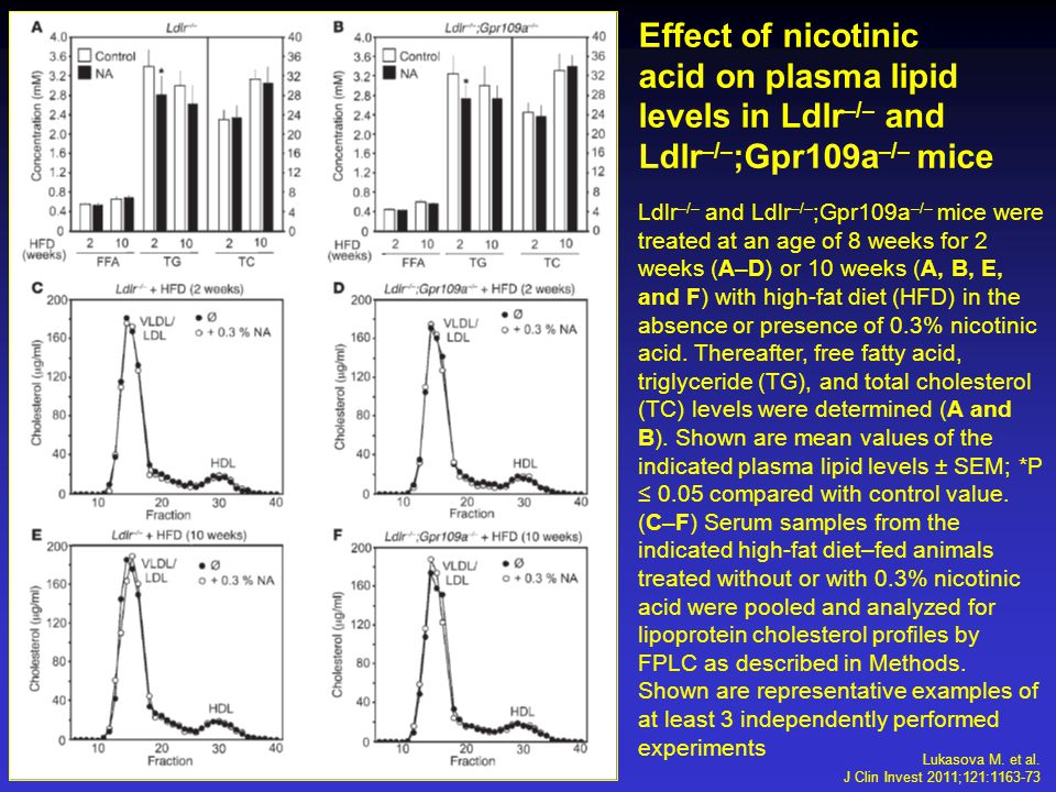 Effect of nicotinic acid on plasma lipid levels in Ldlr –/– and Ldlr –/– ;Gpr109a –/– mice Ldlr –/– and Ldlr –/– ;Gpr109a –/– mice were treated at an age of 8 weeks for 2 weeks (A–D) or 10 weeks (A, B, E, and F) with high-fat diet (HFD) in the absence or presence of 0.3% nicotinic acid.