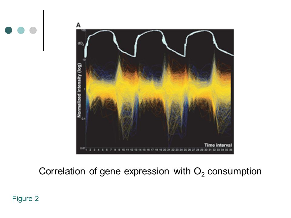 Figure 2 Correlation of gene expression with O 2 consumption