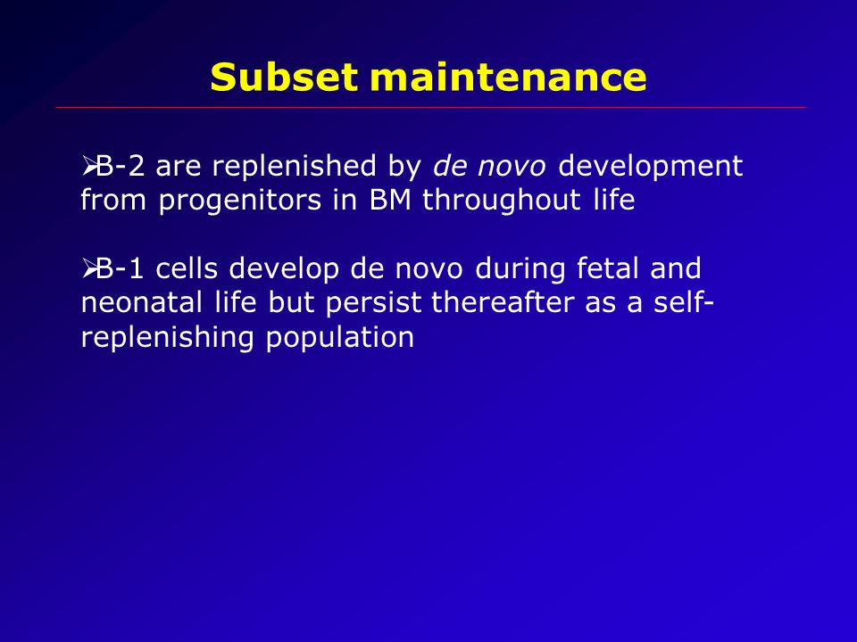  B-2 are replenished by de novo development from progenitors in BM throughout life  B-1 cells develop de novo during fetal and neonatal life but persist thereafter as a self- replenishing population Subset maintenance