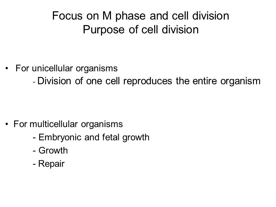 For unicellular organisms - Division of one cell reproduces the entire organism Focus on M phase and cell division Purpose of cell division For multicellular organisms - Embryonic and fetal growth - Growth - Repair