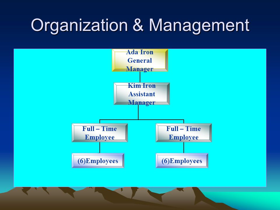 Organization & Management Ada Iron General Manager Full – Time Employee Kim Iron Assistant Manager (6)Employees Full – Time Employee (6)Employees