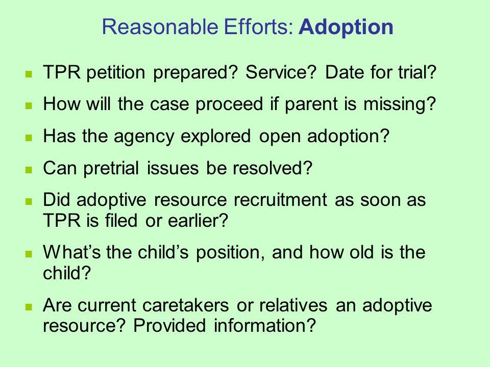 Reasonable Efforts: Adoption TPR petition prepared.
