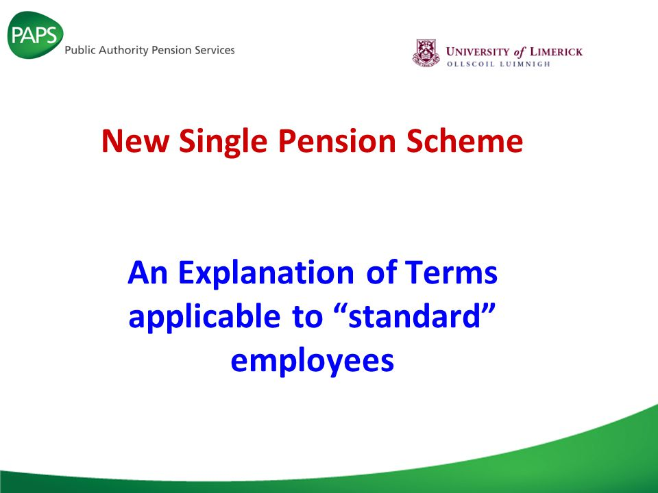 New Single Pension Scheme Coverage New Joiners recruited on or after 1 January 2013 but not – those returning to the public service after a break of less than 26 weeks from a previous pensionable post – those on secondment – those on leave (with or without pay) – those offered appointments in writing before 1 January 2013 who take up the appointment on or after that date – those coming back into pensionable employment under the same contract of employment.