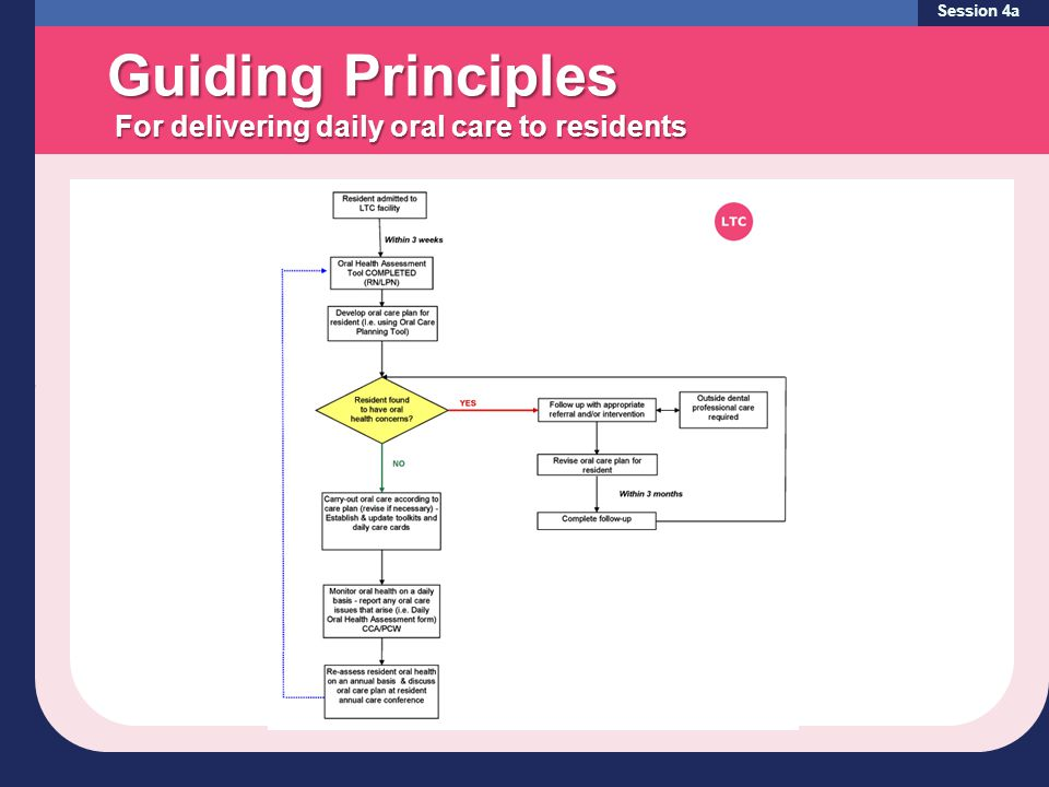 Session 4a Guiding Principles For delivering daily oral care to residents