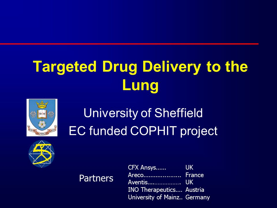 Targeted Drug Delivery to the Lung University of Sheffield EC funded COPHIT project CFX Ansys...... Areco..................... Aventis....……………. INO T