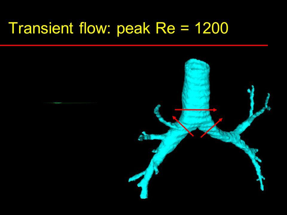 Transient flow: peak Re = 1200 t V