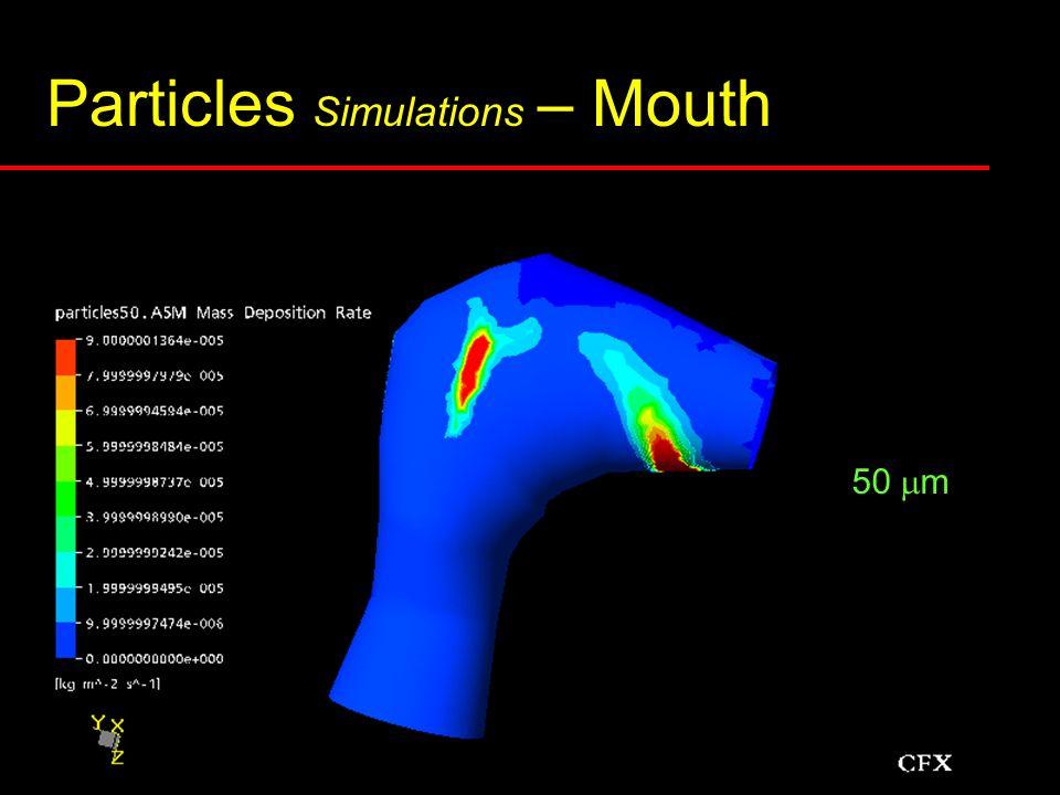 Particles Simulations – Mouth 0.5  m 3 m3 m 7 m7 m 20  m 50  m