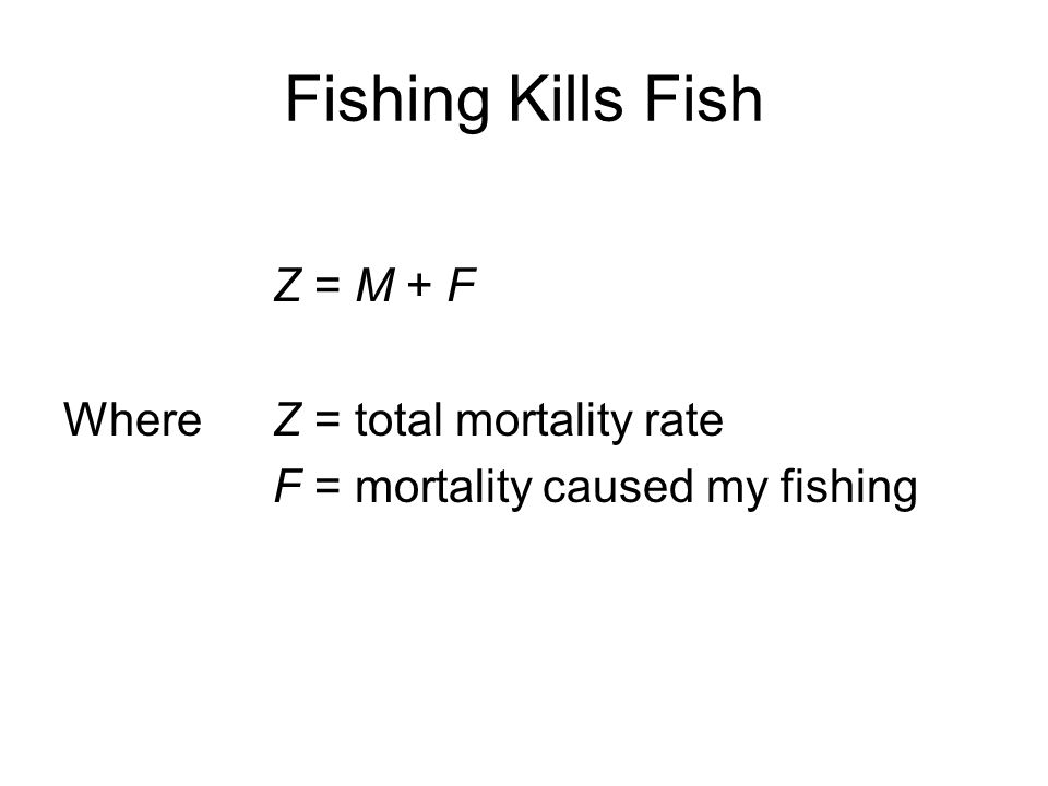 Fishing Kills Fish Z = M + F Where Z = total mortality rate F = mortality caused my fishing