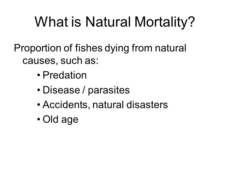 What is Natural Mortality? Proportion of fishes dying from natural causes, such as: Predation Disease / parasites Accidents, natural disasters Old age