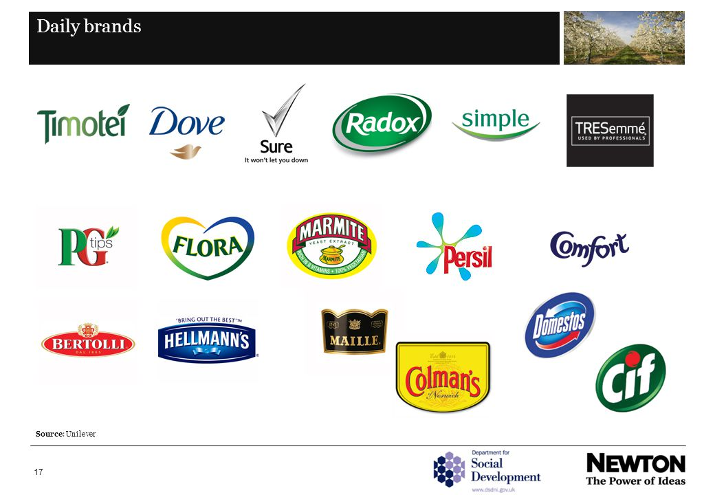 17 Daily brands Source: Unilever