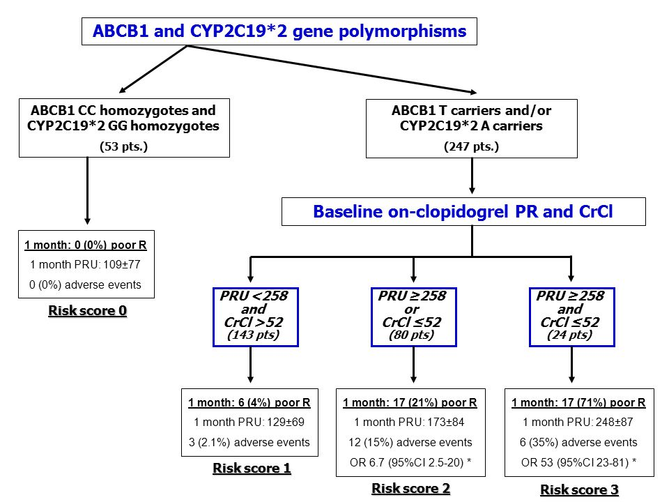 ABCB1 and CYP2C19*2 gene polymorphisms ABCB1 CC homozygotes and CYP2C19*2 GG homozygotes (53 pts.) 1 month: 0 (0%) poor R 1 month PRU: 109±77 0 (0%) adverse events ABCB1 T carriers and/or CYP2C19*2 A carriers (247 pts.) Baseline on-clopidogrel PR and CrCl PRU <258 and CrCl >52 (143 pts) 1 month: 6 (4%) poor R 1 month PRU: 129±69 3 (2.1%) adverse events PRU ≥258 or CrCl ≤52 (80 pts) PRU ≥258 and CrCl ≤52 (24 pts) 1 month: 17 (21%) poor R 1 month PRU: 173±84 12 (15%) adverse events OR 6.7 (95%CI 2.5-20) * 1 month: 17 (71%) poor R 1 month PRU: 248±87 6 (35%) adverse events OR 53 (95%CI 23-81) * Risk score 0 Risk score 1 Risk score 2 Risk score 3